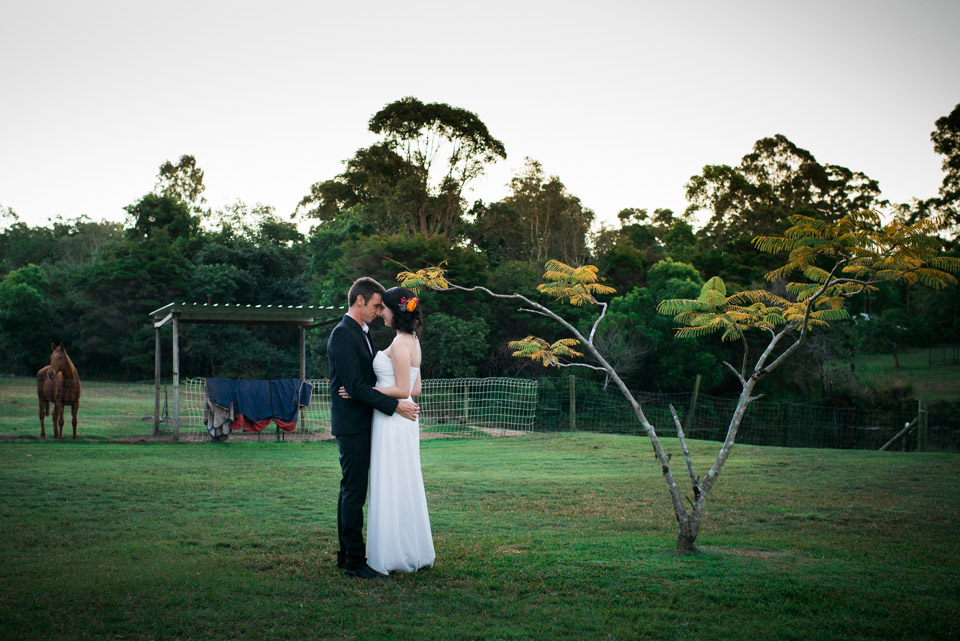 Wide photograph of Danica & Ben in their backyard with a horse, after their wedding.